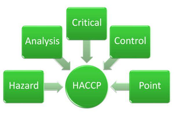 Praca w systemie HACCP to gwarancja produkcji bezpiecznej żywności i przyjaznych stosunków z inspekcją sanitarną.